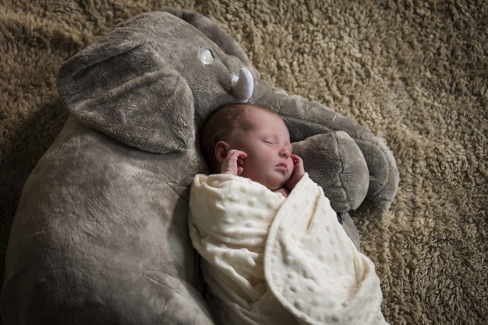 County Durham Baby Photography