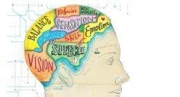 Mappatura cervello