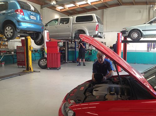 Mechanic working on car repairs in Mount Maunganui