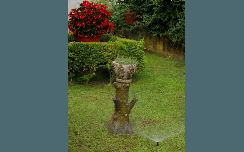 gestione giardino ornamentale