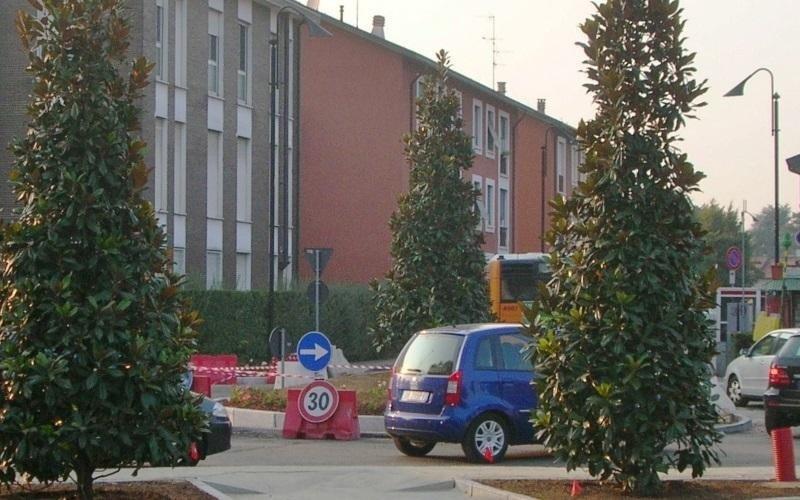 alberi pubblici