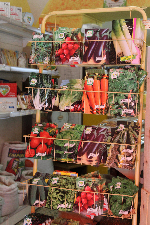Semi e bulbi di frutta e verdura
