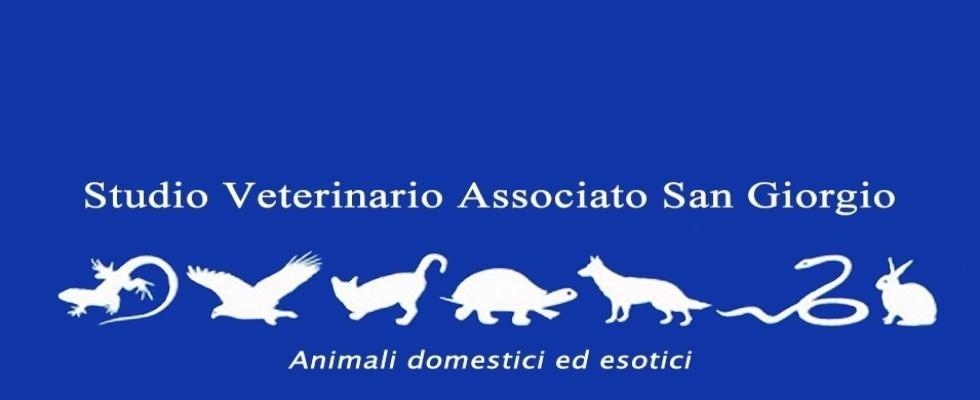 Studio veterinario San Giorgio