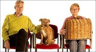 cure per cani anziani