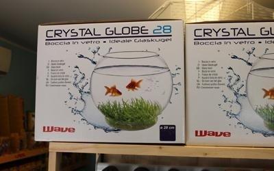 Globi in vetro per pesci