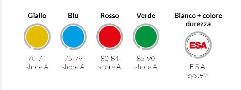 Sistema Multicolor Speedwell Rossini