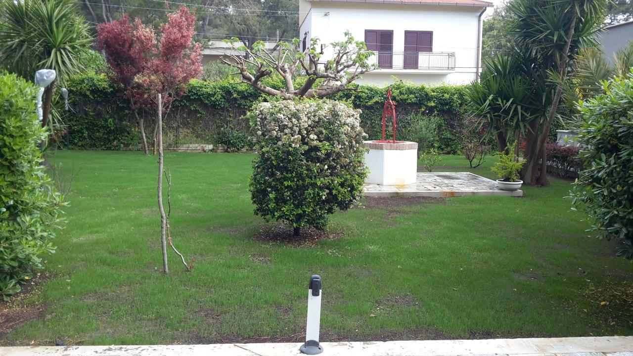 vista di un giardino con alberi di diversi tipi e un pozzo