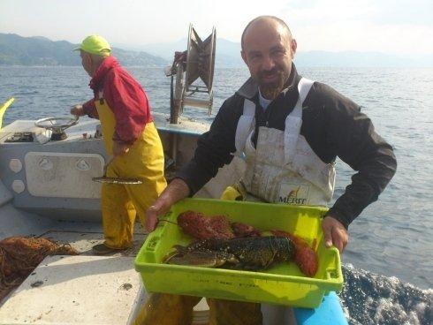 il pescato del giorno