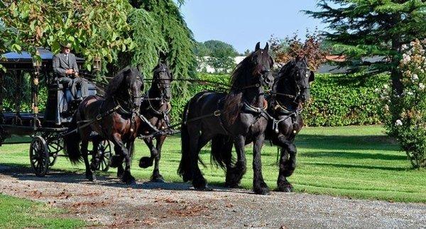 Funerali a cavallo