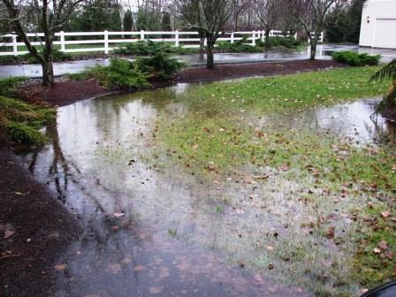 Poor yard drainage can cause many issues