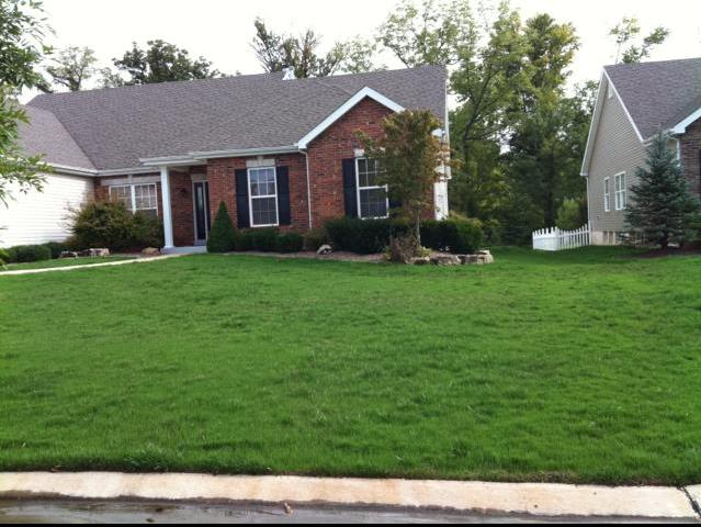Healthy green lawn from Heritage Lawn and Landscape in St. Charles MO