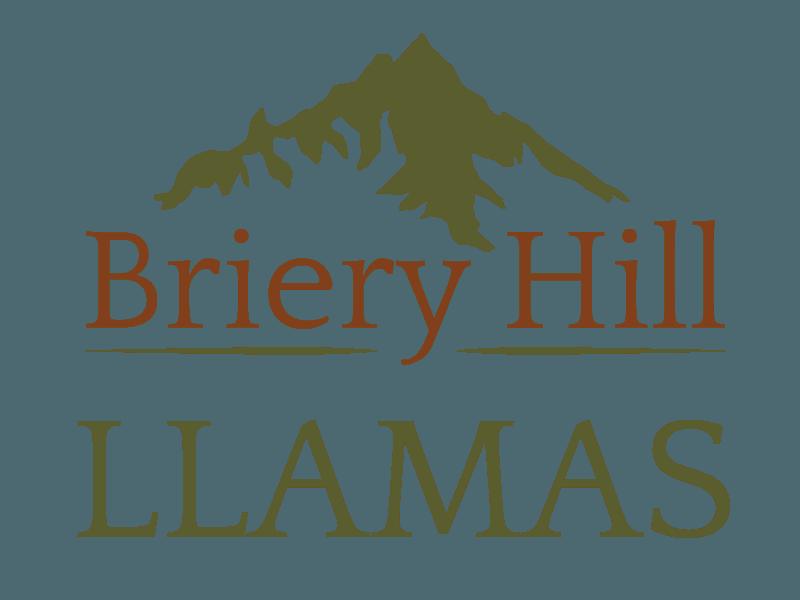 Briery Hill LLAMAS logo
