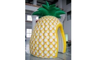 ananas gonfiabile
