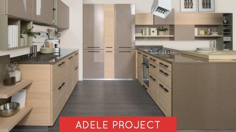 adele-project