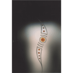 vetri satinati, vetrofusione, tiffany, pontassieve, pelago