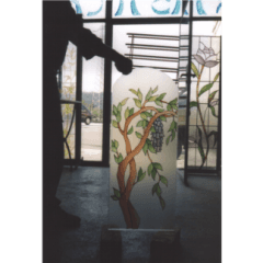 Vetrate pitturata a freddo, vetreria, vetromosaico, vetri dipinti, vetri per sportelli, vetro decorato