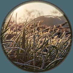 Le 4 stagioni Inverno