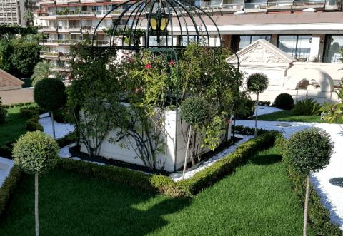 Terrazzi e verde pensile - Ontano Giardini -