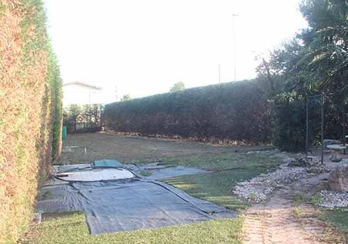 giardino attorniato da alberi