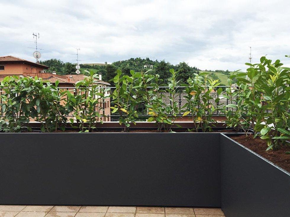 Stunning Siepi Per Terrazzi Photos - Modern Home Design - orangetech.us