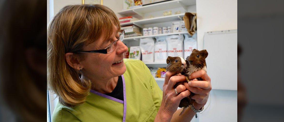 new pet vaccinations