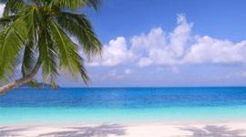 vacanze e viaggi