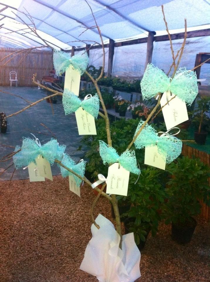 realizzazione tableau bonsai e alberi