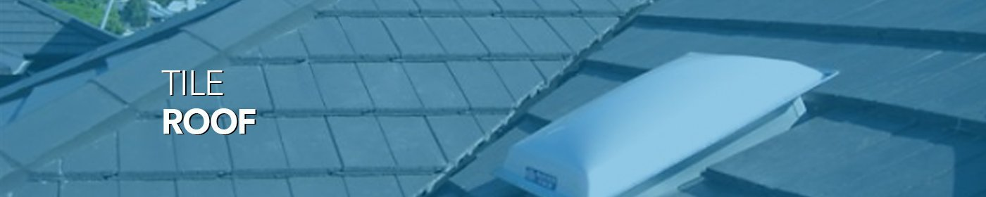 Skylights for tiled roofs with blue tint