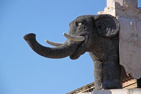 Elefantino Catania