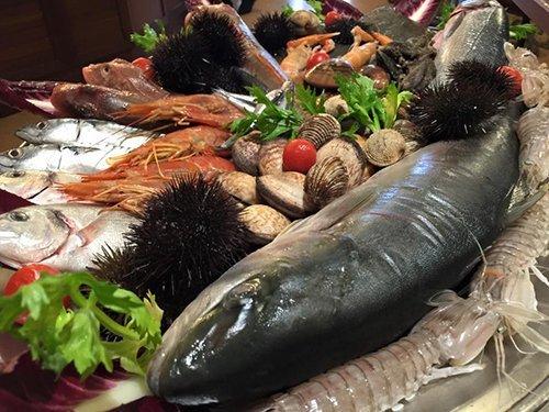 diverse varieta di pesce