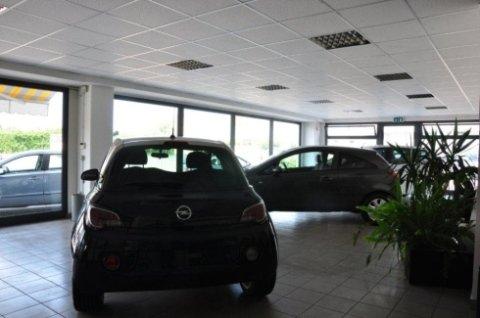 vendita automobili