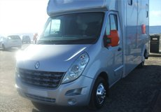 Horse transport - Perthshire, Scotland - Ayshire Horse Transport - Horses