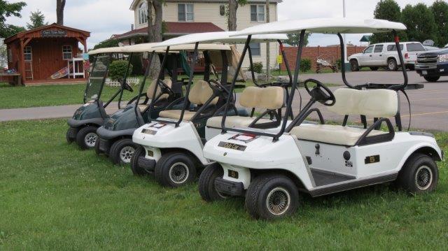 our fleet of golf carts