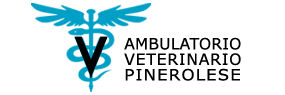 ambulatorio veterinario pinerolese