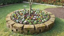 giardinaggio, abbattimento alberi, manutenzione giardini