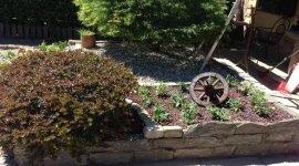 manutenzione verde, rigenerazione manti erbosi, potatura
