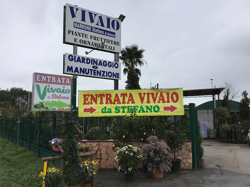 vivaio