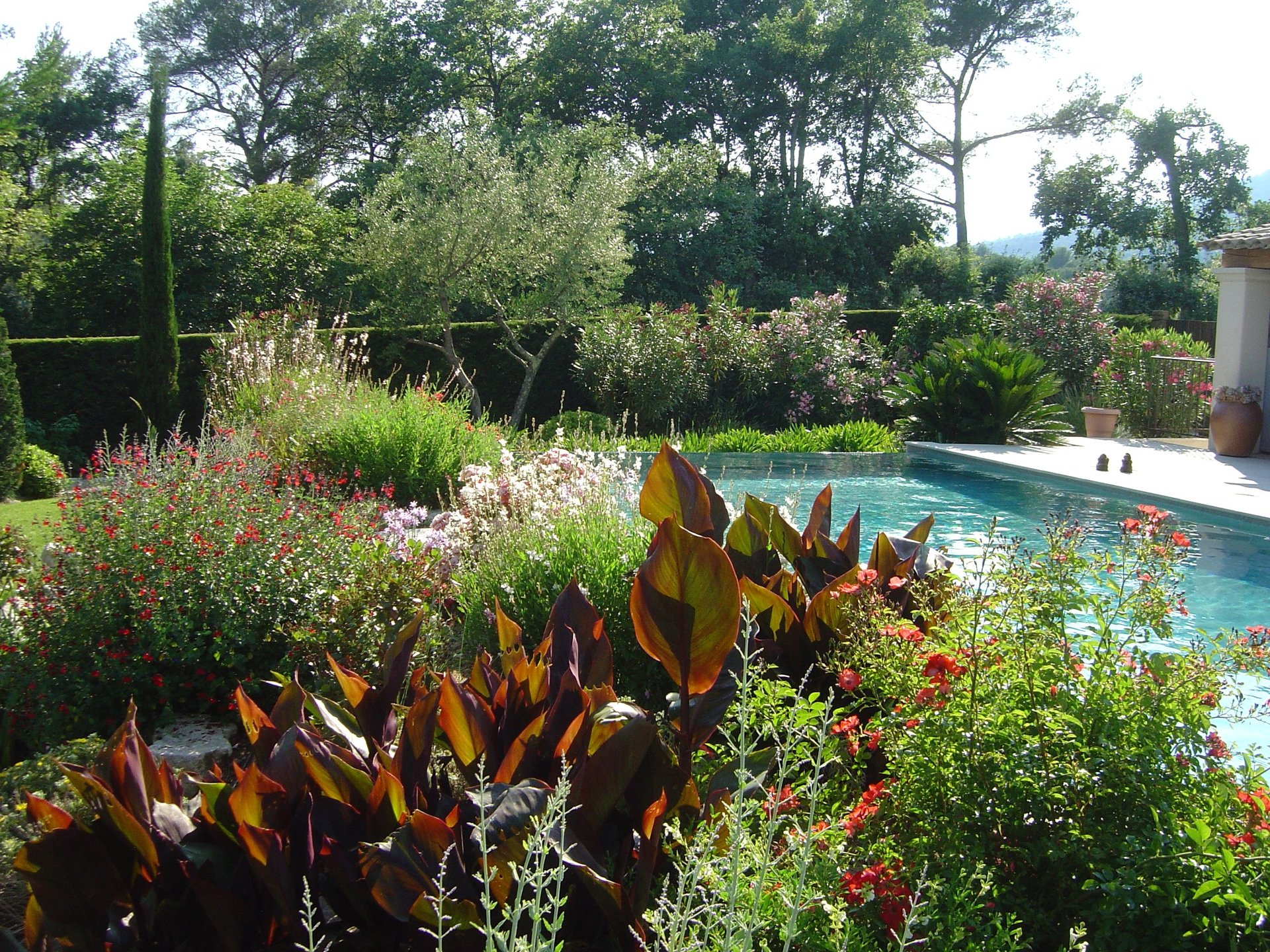Delta paysage entreprise de jardin sp cialiste de l for Entreprise entretien jardin 974