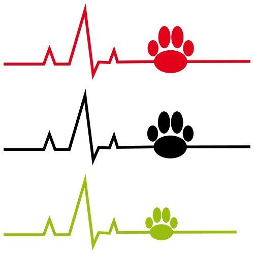 Icona - esami cardiologici