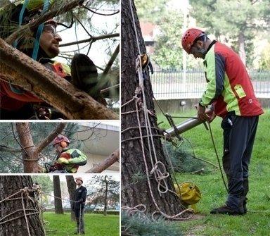 realizzazione e manutenzione di parchi