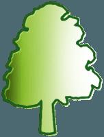 Arboria snc