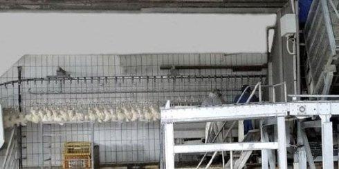 Impianti di macellazione