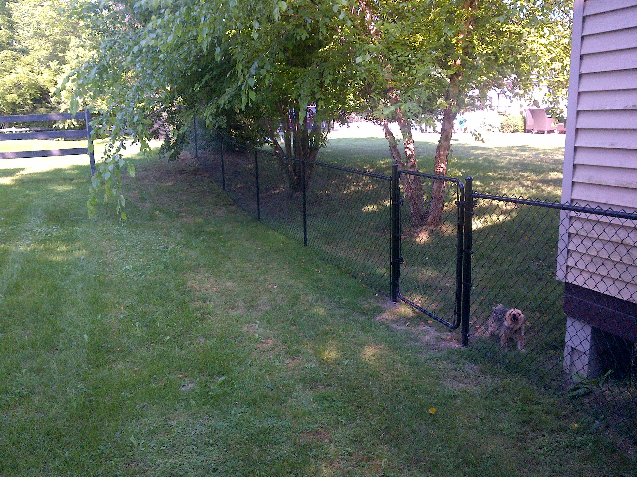 Residential Fence Supplier Pool Fences Yard Fences Pet