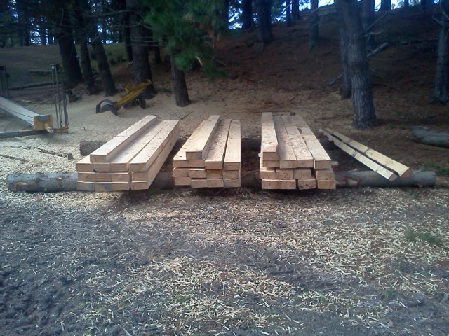 Timber cutting in Whangarei