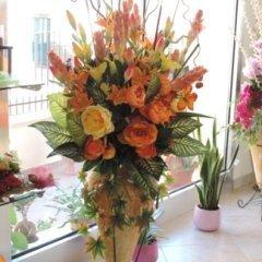 piante fiori vaso