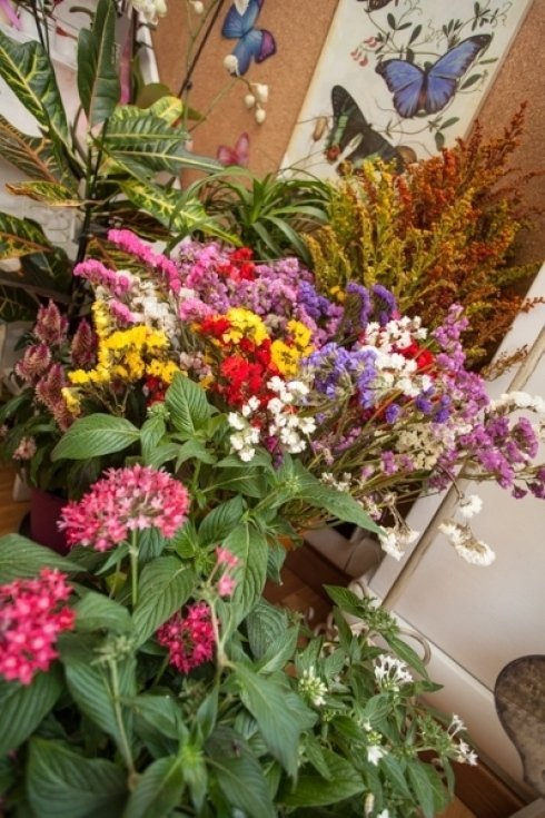 creazioni floreali