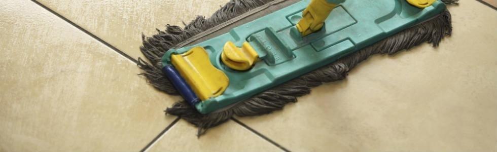 pulisud servizi