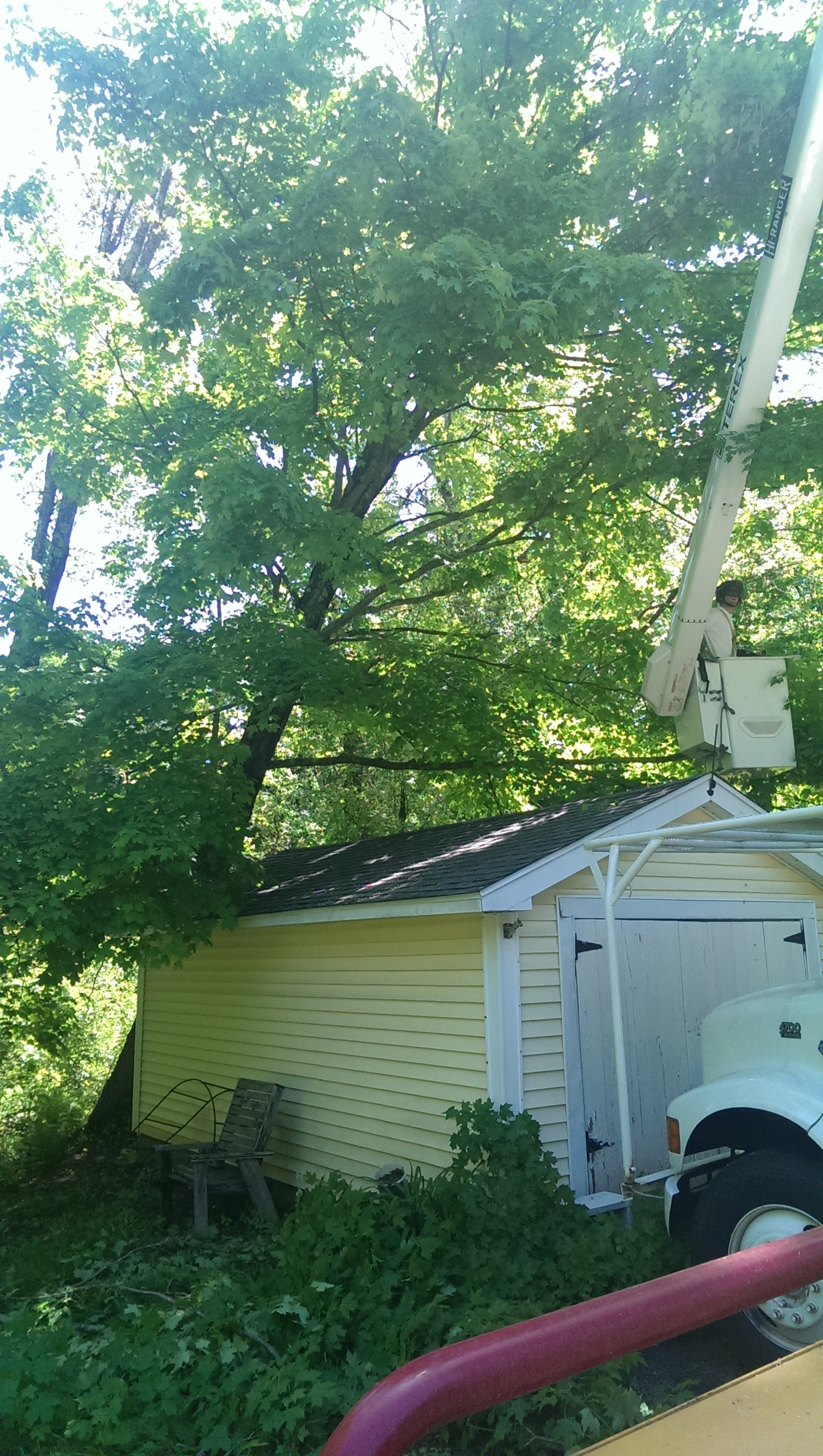 Souhegan Valley Tree Service