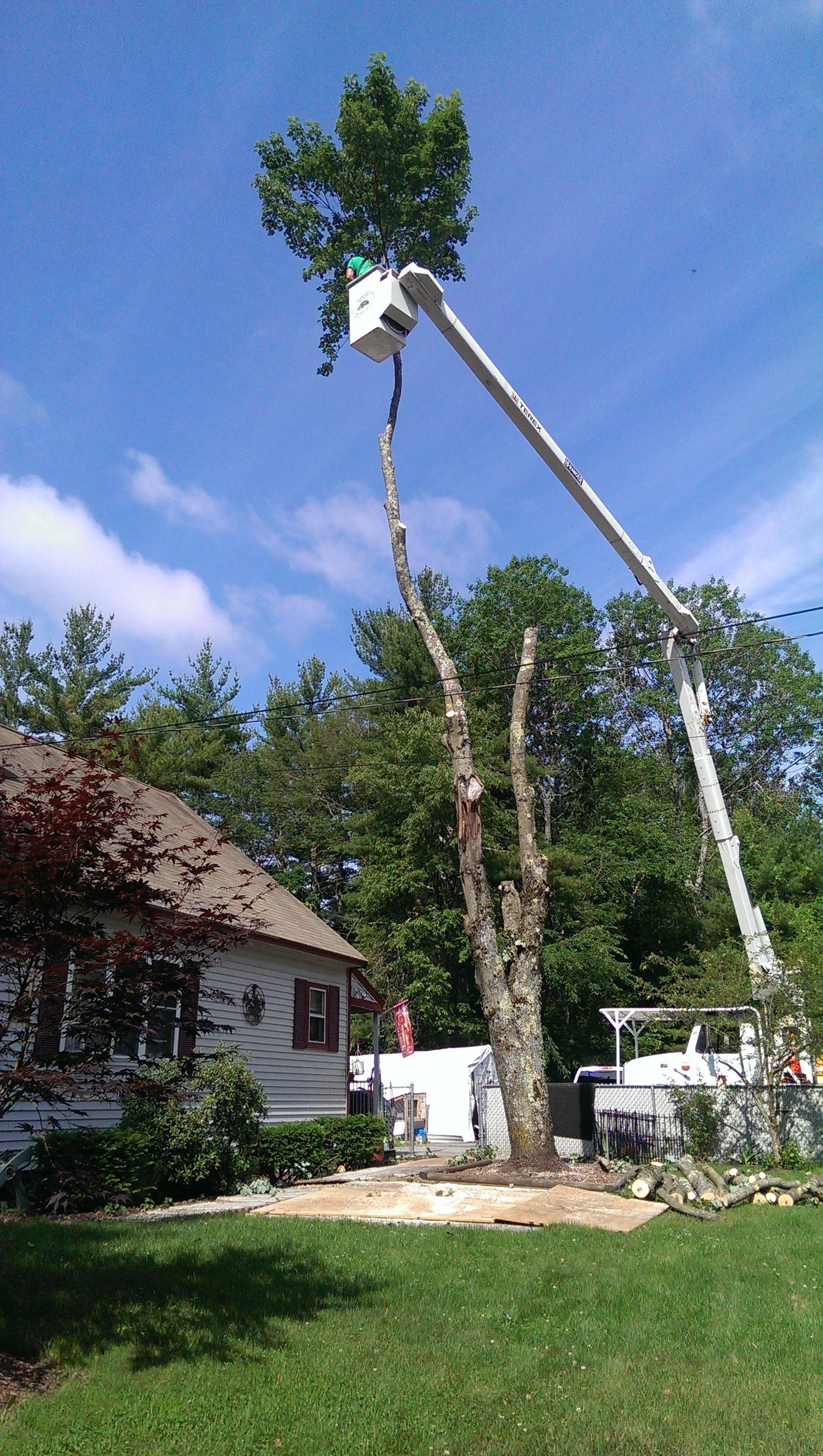 Tree Removal Crane Work Hollis, NH