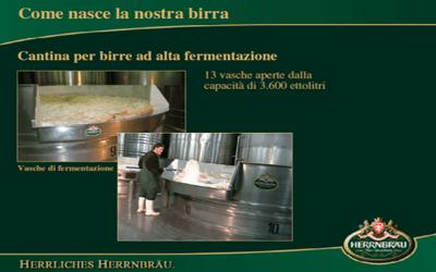 Cantina alta fermentazione